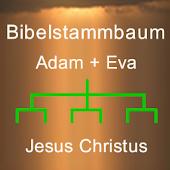 Bibelstammbaum von Jesus