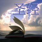e圣经 icon