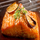 Just Salmon Recipes