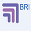 BRI Marketing Solutions icon