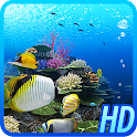 Coral Reef of Kerama HD