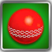Cricket Ball Fever