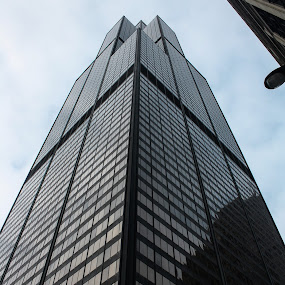 Willis Tower by Bre Marie - Buildings & Architecture Other Exteriors ( willis tower, bemore, chicago, looking up, downtown, looking, up, images, sky, open, contest, challenge )