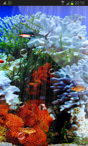 Best Marine Aquarium HD LWP