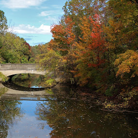by Karen Jaffer - Uncategorized All Uncategorized ( fall, color, colorful, nature )