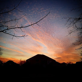 Gorgeous sunrise from February 13, 2014 that I took out in my front yard! by Jonathan Brasch - Instagram & Mobile Android ( clouds, sunrises, colorful, beautiful, scenic, sun, sky, nature, gorgeous, cloud, trees, pink, scenery, sunrise, branches )