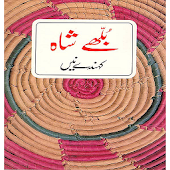Bulleh Shah Kehnde Nain poetry