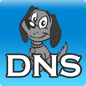 DNS Server, anti DNS pollution