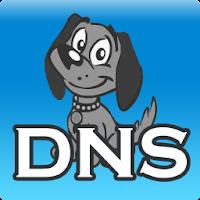 DNS Server, anti DNS pollution 1.6.5