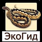 EcoGuide: Russian Reptiles icon