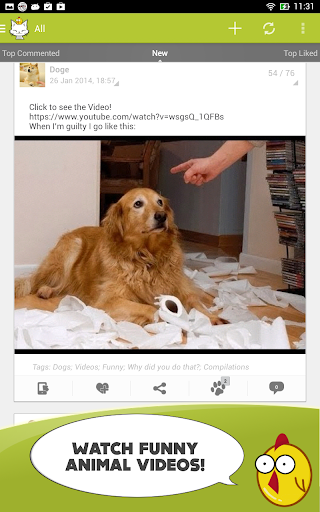 無料社交Appの私たちのおかしな動物 - 壁紙|記事Game