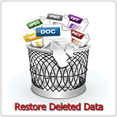 Restore Deleted Data