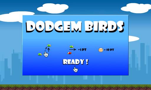 Dodgem Birds