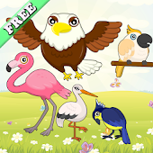 Download Birds Match Games for Toddlers APK for Android Kitkat