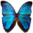 Butterfly Effect Free icon