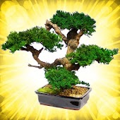 Bonsai Encyclopedia