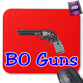 BO Guns Howto