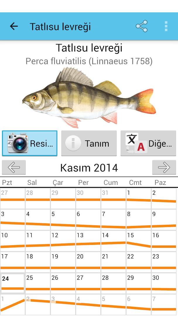 рейтинг клева рыбы