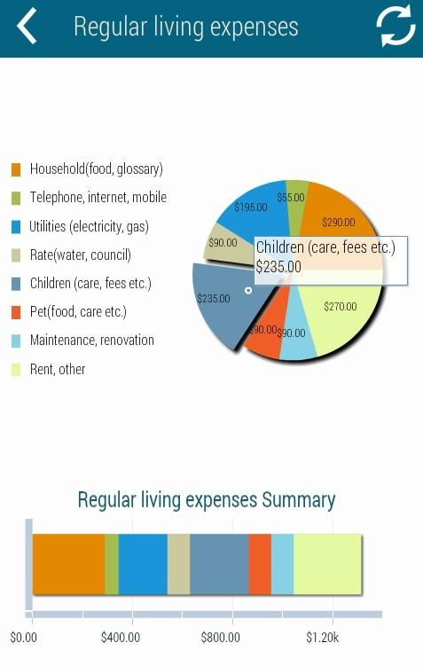 Home Budget Calculator - screenshot