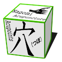 Acupuncture (Nagomi · Pro) icon