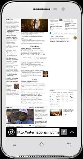 Riegel Browser