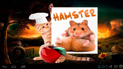 Hamster Ball > iPad, iPhone, Android, Mac & PC Game | Big Fish