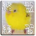 pi-suke endgames icon