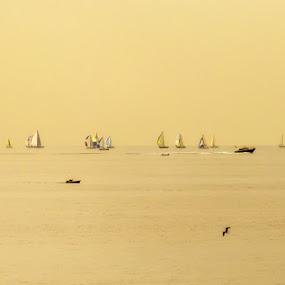 Floating by Geanina Boureanu - Landscapes Waterscapes ( floating, sea, morning, landscape )