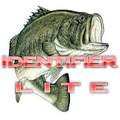 Freshwater Fishing LITE