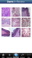 Screenshot of Dermatology In-Review