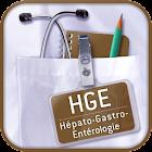 SMARTfiches HGE icon