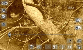Screenshot of Your 2013 Camera