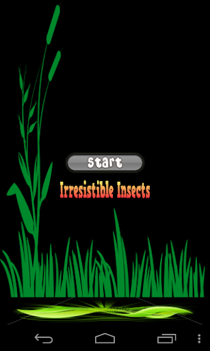 Irresistible Insects