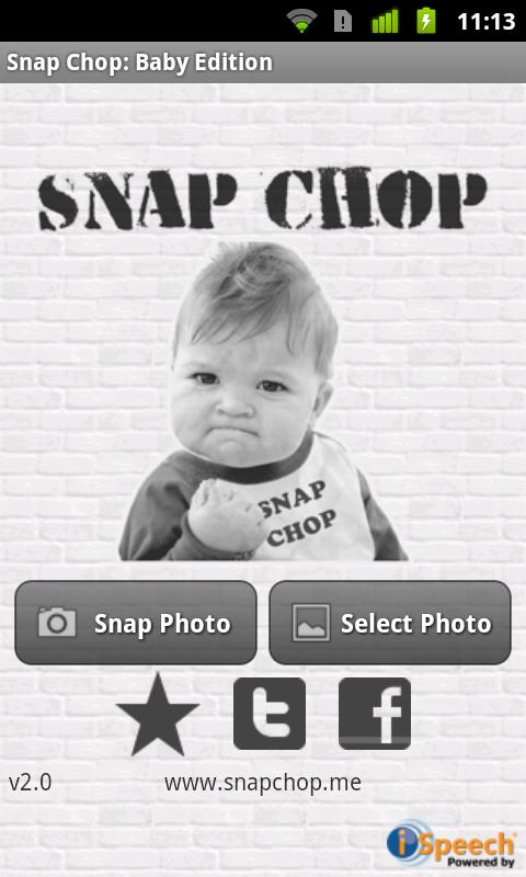 Snap Chop: Baby Edition - screenshot