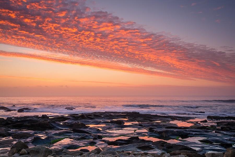 Light by the Sea by Rossana Ferreira - Landscapes Sunsets & Sunrises ( caminha, vila praia de ancora, sunset, seaside, portugal, golden hour, sunrise,  )
