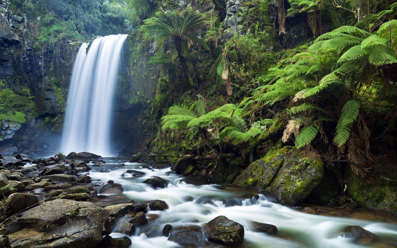 Waterfalls 3d Live Wallpaper Screenshot 3 6 Jungle Waterfall Live