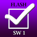 Social Work Flash 1 logo
