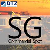 SG Commercial Spot