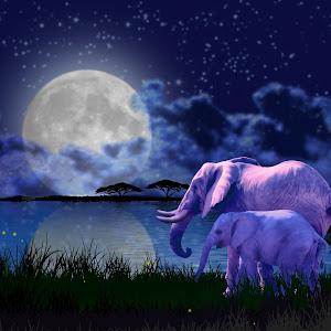 moon elephant.jpg