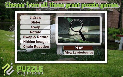 Albino Animals Puzzles