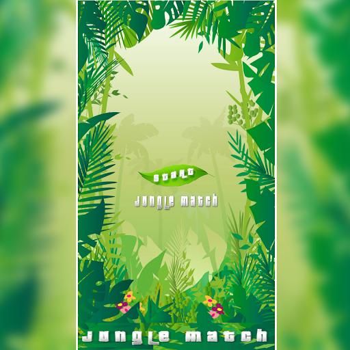 Jungle Match