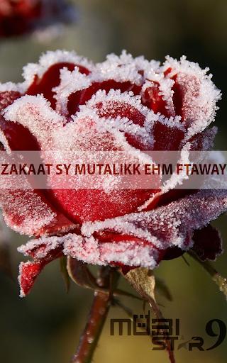Zakat sy Mutallik Ehm Ftaway