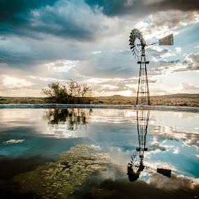 Reflection by Anoesjka Botes - Landscapes Sunsets & Sunrises