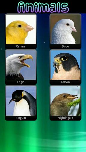 玩教育App|兒童動物的聲音免費|APP試玩