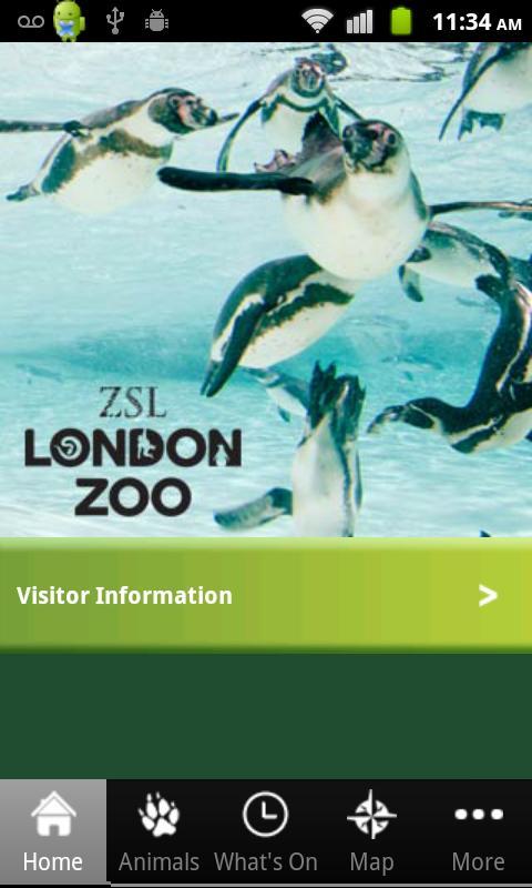 London Zoo - screenshot
