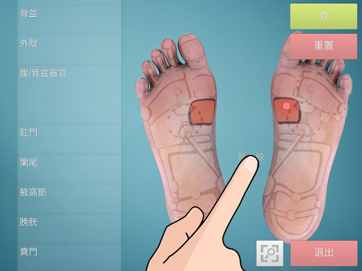 Drag Drop Reflexology foot