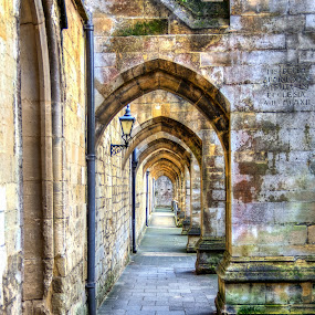 Winchester Cathedral Arches by G. Stetson - Buildings & Architecture Architectural Detail (  )