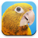 Spoken Genre for Parrots icon