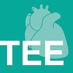 TEE v1.0.1