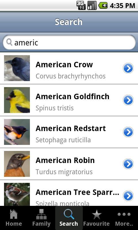 Backyard Birds of America - screenshot